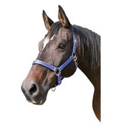Ohlávka Mustang
