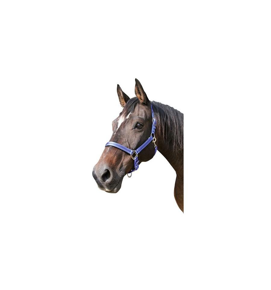 Ohlávka Mustang - Jezdecké potřeby Brno c8b6034d86