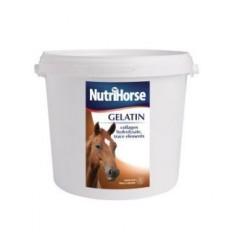 NutriHors Gelatin